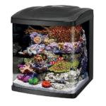 Coralife tanks and accessories at amazing prices